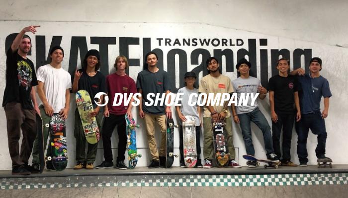 TWS Park-DVS-