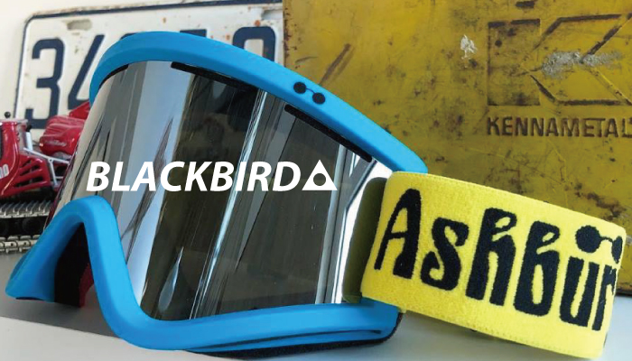 ASHBURY-BLACKBIRD-