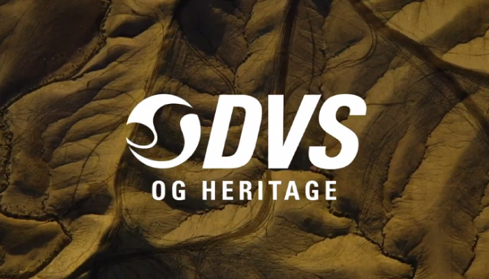 DVS Shoes Spring 2020 Launch